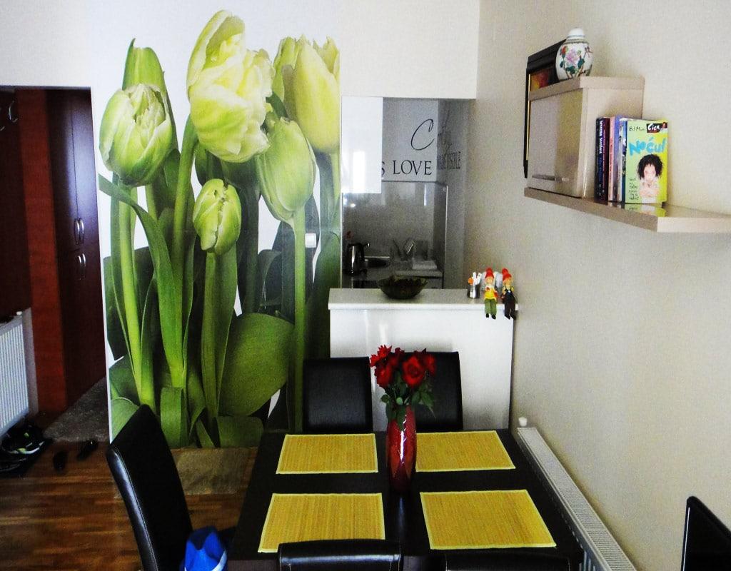Apartman-Bela-slika-3