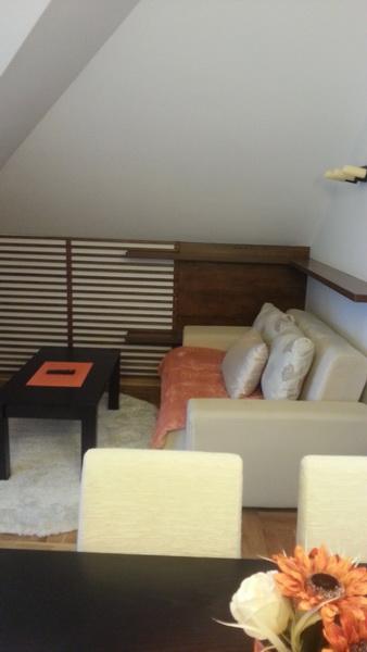 Apartman_roganovic_slika25